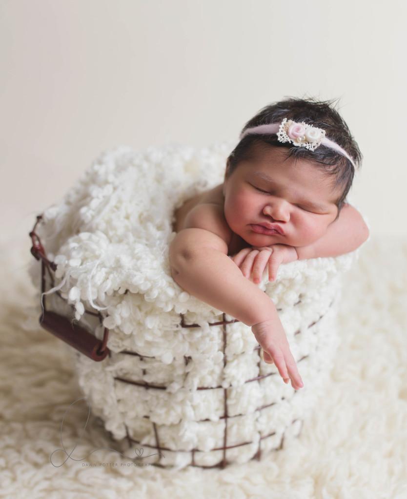 Studio Lighting Newborn Photography: Seattle Newborn Photography