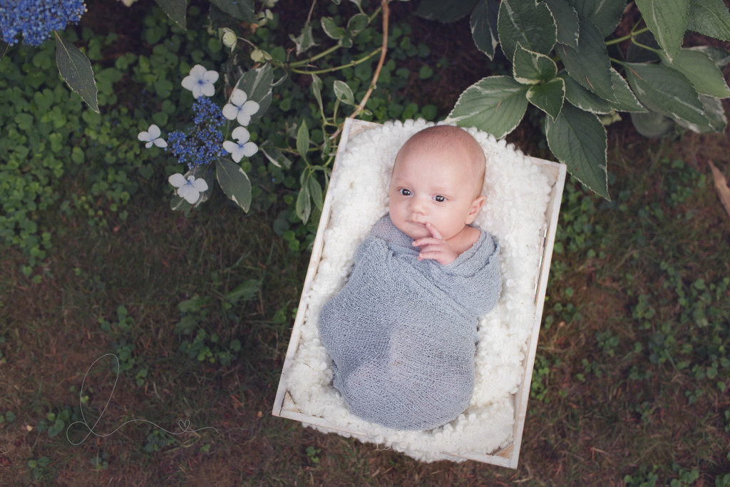Two Month Old Outdoor Newborn session | Seattle – Maple