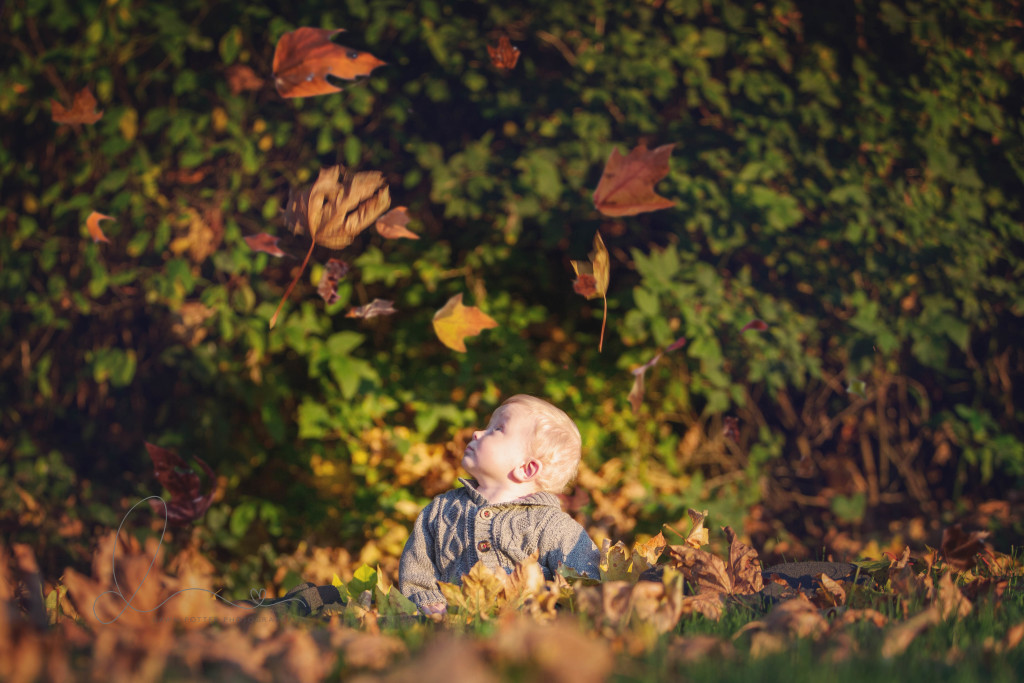 baby boy with falling leaves