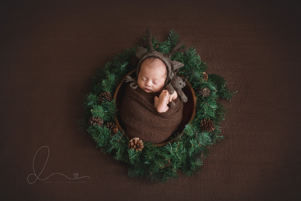 baby in bowl | baby in nest | three week old | bellevue newborn photographer