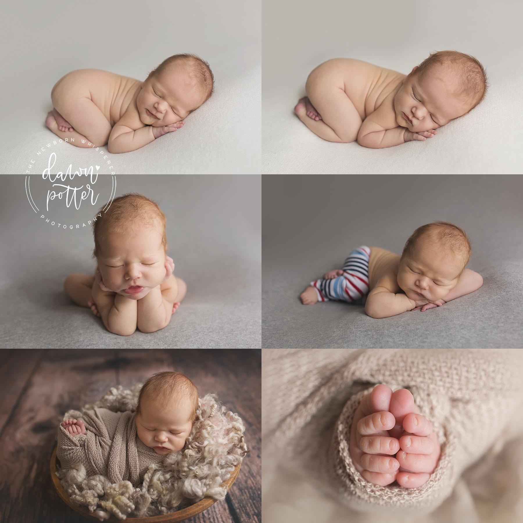 Bellevue Newborn Photography | Dawn Potter Photography