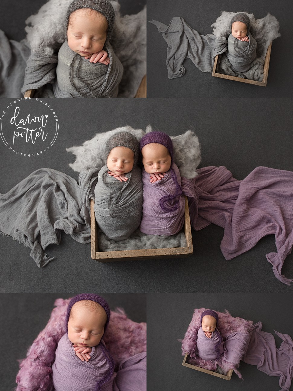 newborn photography Bellevue_0013.jpg