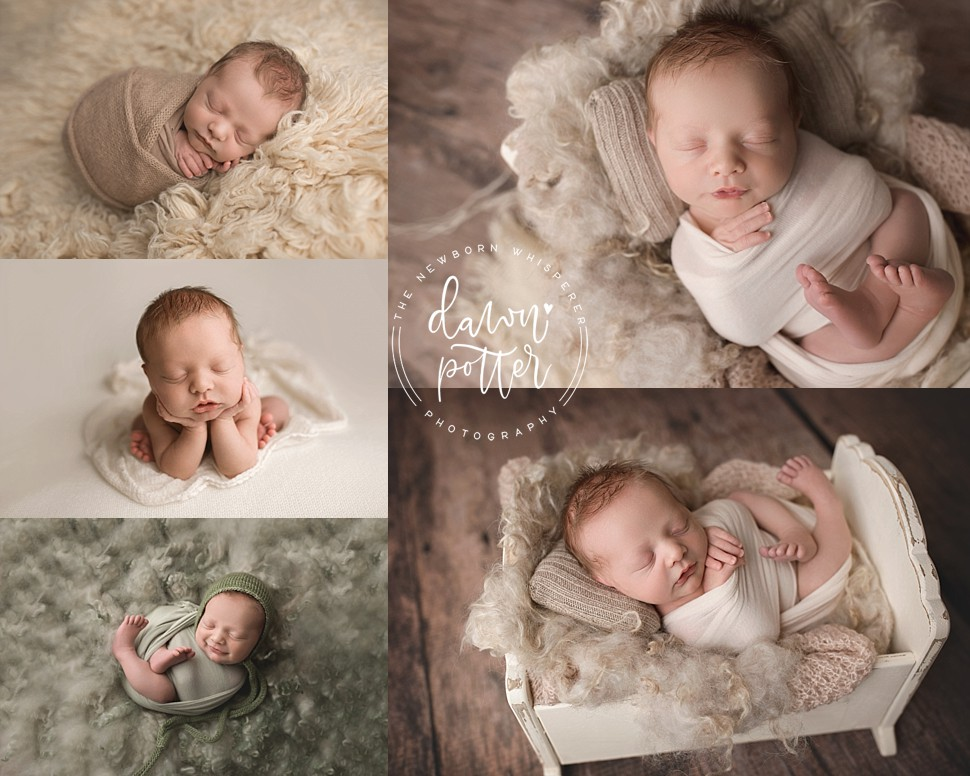 Newborn Photography Mentor_0015.jpg