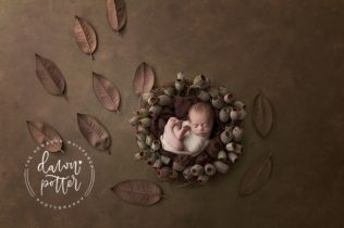 Newborn Photography Issaquah