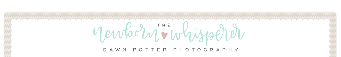 Dawn Potter Photography logo