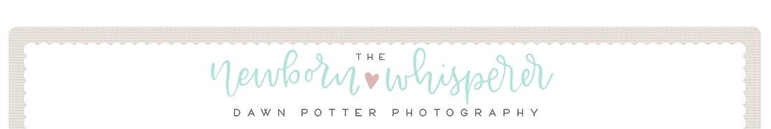 Dawn Potter Photography logo